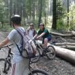 MTB-Ausfahrt-Wald-kompr